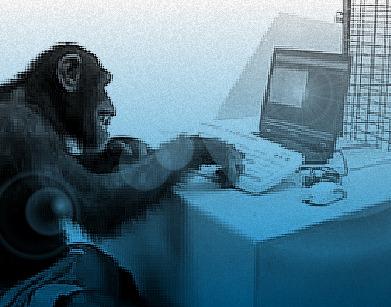 Twitter Monkey