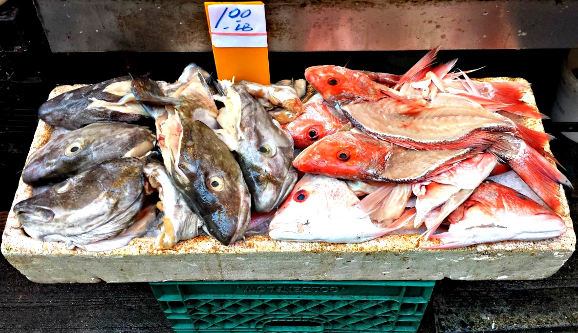 Chinatown fish for sale