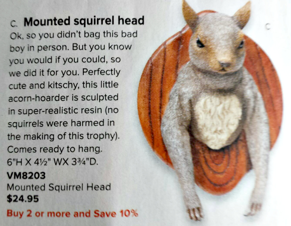 Mounted Squirrel from SkyMall Catalog