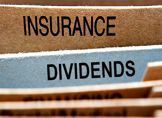 Here's the top dividend-paying whole life insurance companies (by rate)
